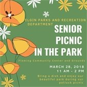 Senior Picnic in the park