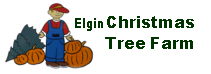 Elgin Christmas Tree Farm